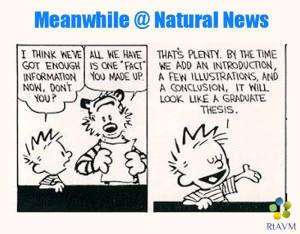 Calvin & Hobbes Natural